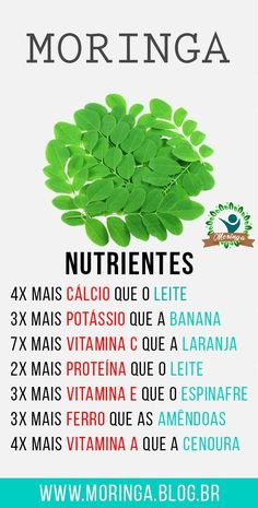Ketosis Diet For Beginners, Diets For Beginners, Healthy Lifestyle Tips, Healthy Tips, Miracle Tree, Medicinal Herbs, Natural Medicine, Superfoods, Natural Health
