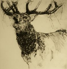 Perlin Fine Art-Bellowing Stag,Emmerson Mayes