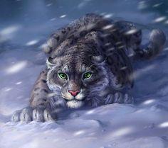:D leopard