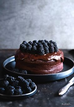 (с) Chocolate cake with bittersweet chocolate ganache and fresh blackberries