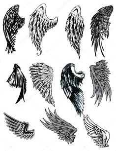 wings drawing easy - Google Search