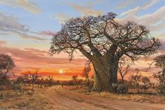 Landscape Paintings Oil Painting - Baobab Sunset with Buffalo by Errol Norbury