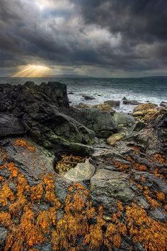 This was taken on the southern parts of the Isle of Skye. The place is called Elgol and I was there under dramatic skies like it was often t...