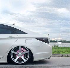 Custom Sonata Hyundai Sonata, Jdm, Dream Cars, Vehicles, Sick, Motorcycles, Wheels, Trucks, Interiors