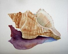 Watercolor Painting Conch Seashell Shell by BarbaraRosenzweig, $29.00