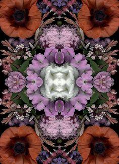 Design Free Thursday // Bloom Day Scans Flower Art by Craig Cramer. Textiles, Textile Patterns, Graphic Patterns, Print Patterns, Flower Mandala, Flower Art, Collages, Yellena James, Fuchsia