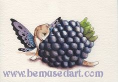 Blackberry Fairy Cat