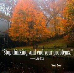 Stop thinking, end your problems. -Lao Tzu