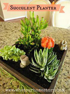 DIY succulent planter tutorial @ www.whatsurhomestory.com