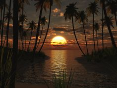 ocean hideaway - Google Search