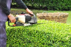 A garden tidy is a wonderful way to get your garden ready for an event. We provide garden tidy's in Ascot, Virginia Water, Windlesham and Wokingham