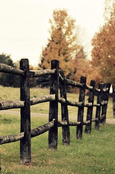 {country fence}