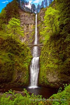 Multnomah Falls, the tallest waterfall in Oregon. Multnomah Falls, located in the Columbia River Gorge, drops 611 feet in two tiers. The bottom tier, 69 feet tall, is below the historic Benson Bridge.