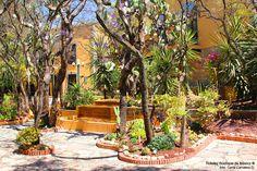 hoteles-boutique-de-mexico-hotel-quinta-las-acacias-galeria-6