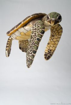HONU Green Sea Turtle Sculpture made of Needle Felted Wool. Installation/ Floating Scultpure