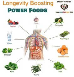 Foods that will help you live long