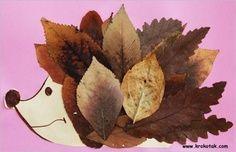 laboratori per bambini  autunno riccio con foglie