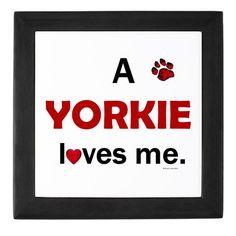 Several yorkies love me..=)