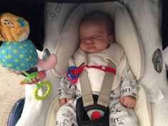 Alessio: ToyToggle saved his dummy from the floor with his short red strap!