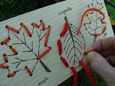 Leaves - Sewing Card- project idea~ hammer leaves on wood, drill holes for stitching. Autumn Crafts, Autumn Art, Autumn Theme, Autumn Leaves, Autumn Activities, Craft Activities, Diy For Kids, Crafts For Kids, Diy And Crafts