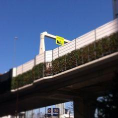 Sky is so blue today. At Hatsudai crossing, Shibuya-ku, Tokyo.