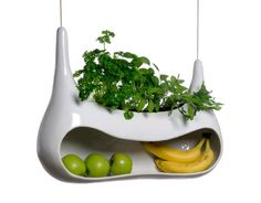 Combination Fruit Basket/Herb Garden: This would be perfect for a sunny window--plus a little growing basil will always keep your kitchen smelling fresh
