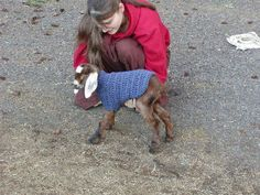 And another #crochet goat sweater pattern
