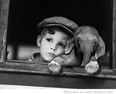 Cute pic with a boy and a elephant