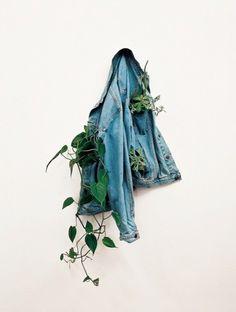 Praxis DIY | Wat een bijzondere bloempot van een spijkerbroek met daarin wat plantjes!