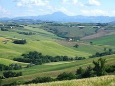 http://www.comune.senigallia.an.it/site/turismo/gallery/multisite/senigalliaturismo/paesaggi-del-territorio/paesaggio6.jpg