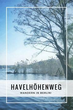 Wandern in Berlin? Na klar! Berlin ist eine der grünsten Hauptstädte Europas. Vor allem die Randbezirke der deutschen Hauptstadt bieten mit grünen Wäldern und Spree, Havel sowie etlichen Seen kleine Naturparadiese. Ein Paradebeispiel hierfür ist der Havelhöhenweg im Westen Berlins. Rund 35 Meter über der gemächlich dahinfließenden Havel wirst du Trubel und Lärm der Spreemetropole ganz schnell vergessen.