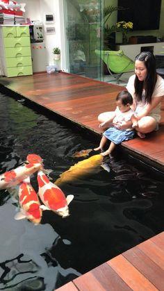 34 unbelievable home aquarium setup that will make your jaw drop 11 Fish Pond Gardens, Koi Fish Pond, Fish Ponds, Aquarium Setup, Home Aquarium, Koi Pond Design, Garden Design, Ideas Cabaña, Decor Ideas
