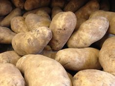Long Island Potato Festival coming to Cutchogue in August... Potato lovers and carboholics alike will have an opportunity to celebrate the North Fork's agricultural roots at the first ever Long Island Potato Festival.