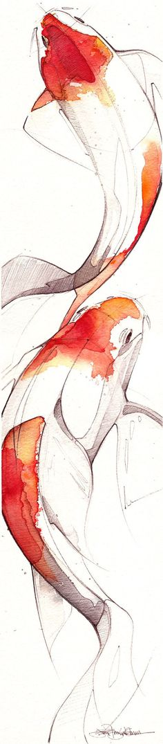 "'Modern Koi', Inspired by ""Koi Traditional Japanese Painting"", Watercolor Illustration by Jennifer Kraska [b., American], ~ [Isn't a tattoo but it has a similar theme to my idea. A beautiful sketch like this would be stunning]. Art Inspo, Art Japonais, Art Et Illustration, Illustration Animals, Graphic Illustrations, Fish Art, Fish Fish, Art Design, Oeuvre D'art"