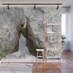 A rolling stone gathers no moss - This one does Wall Mural by viivaniina Rolling Stones, Wall Murals, Nature Photography, Artwork, Home Decor, Wallpaper Murals, Work Of Art, Decoration Home, Murals