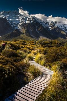 Trekking Middle Earth, New Zealand; I'd go back in a heart beat