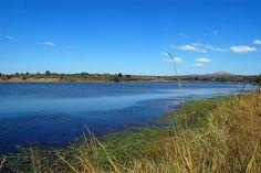 Kruger Park, near Pretoriuskop