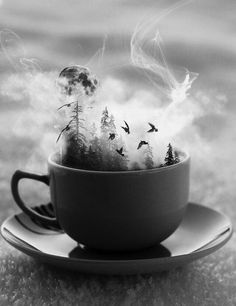 This manipulated image looks as though it was inspired by the coils of steam that rise from warm beverages. It was based off of real life which means that it relates to order, but it also relates to disorder as forests growing in your mug isn't a normal occurrence.