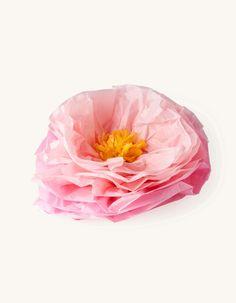 Decorative 3D flower | Paper | 45 cm | Søstrene Grene Paper Flowers, Anna, 3d, Party