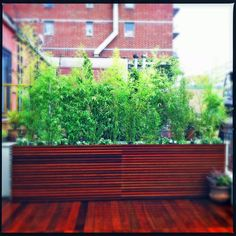 Picture of NYC Roof Garden Design - Contemporary Deck & Planters