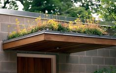 A green roof, also known as a grass roof or living roof, is a growing trend. Roof Design, Exterior Design, Green Roof Benefits, Green Roof System, Roof Architecture, Sustainable Architecture, Residential Architecture, Contemporary Architecture, Living Roofs