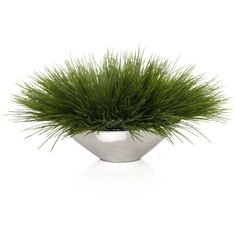 Grass In Silver Pot ($50) ❤ liked on Polyvore featuring home, home decor, floral decor, plants, flowers, decor, fillers, backgrounds, flower home decor and silver pot
