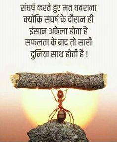 Truth Quotes, Life Quotes, Rajput Quotes, Intelligence Quotes, Army Love, Indian Army, Hindi Quotes, Insight, Motivational Quotes