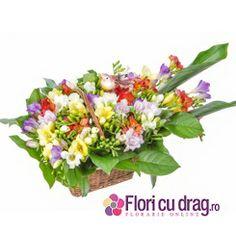 Buchet de flori cadou de 1 si 8 Martie  http://www.floricudrag.ro/home/147-cos-cu-25-frezii-multicolore.html
