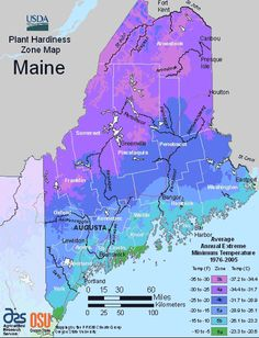 The map on this page is the USDA map of planting zones for Maine. This map will help you to find your USDA Maine hardiness zone.  In Maine, there are four planting zones. They are zone 3, zone 4, zone 5 and zone 6. If you live in Maine, you live in one of these hardiness zones. To use this USDA Maine hardiness zone map all you need to do is find where you live on the and match the color of that area of that map to the colors on the legend to the right.