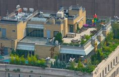 Rooftops of the rich in New York City.