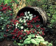 Shade Garden Creative Accent
