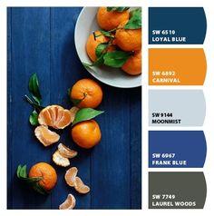 Paint colors from ColorSnap by Sherwin-Williams Orange Color Combinations, Orange Color Schemes, Orange Color Palettes, Blue Colour Palette, Living Room Orange, Bedroom Orange, Powder Blue Color, Dark Blue Color, Orange Kitchen Decor