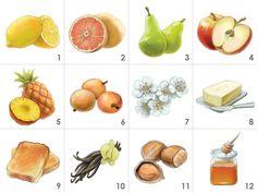 Weißwein-Aroma-Set (12 Weinaromen): 1.Zitrone, 2.Pampelmuse, 3.Birne, 4.Apfel, 5.Ananas, 6.Stachelbeere, 7.Hagedorn, 8.Butter, 9.Toast, 10.Vanille, 11.Haselnuss, 12.Honig