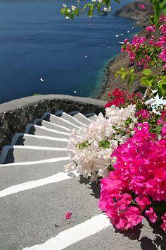white steps to beach, flowers via Emilialua
